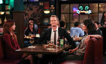 How I Met Your Mother Spinoff: Would You Watch?