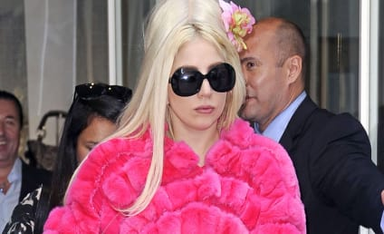 """Lady Gaga SLAMS PETA, Rejects Pressure From """"Violent, Abusive, Childish"""" Group"""
