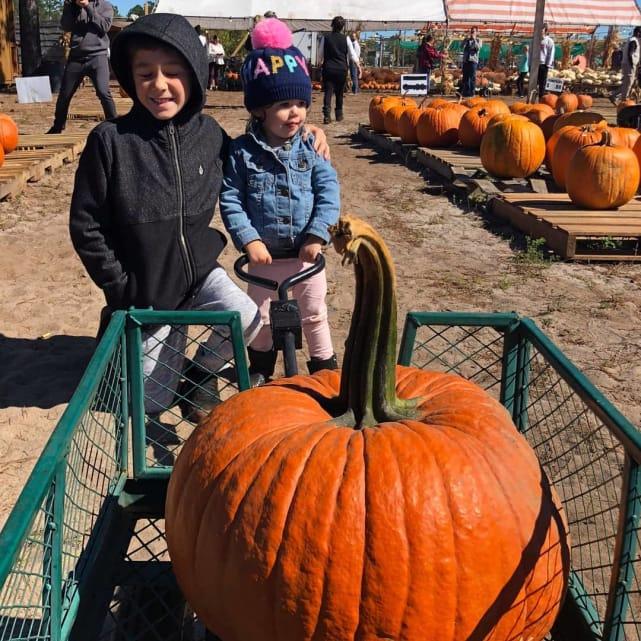 Jace and ensley look at pumpkins