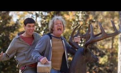Dumb and Dumber To Trailer: Released! Hilarious!