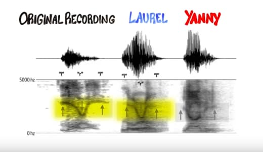 yanny v laurel acoustic similarities