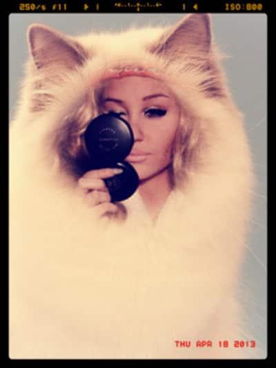 Amanda Bynes as a Cat