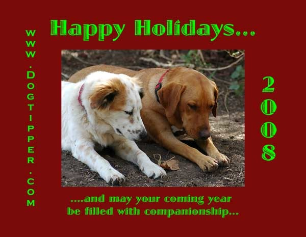 The dog will not go on the holiday card.