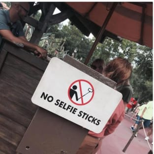 disney to patrons get over yourself no selfie sticks allowed the holly. Black Bedroom Furniture Sets. Home Design Ideas