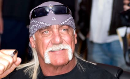 Hulk Hogan Identifies Heather Clem as Sex Tape Partner, Criticizes Own Performance