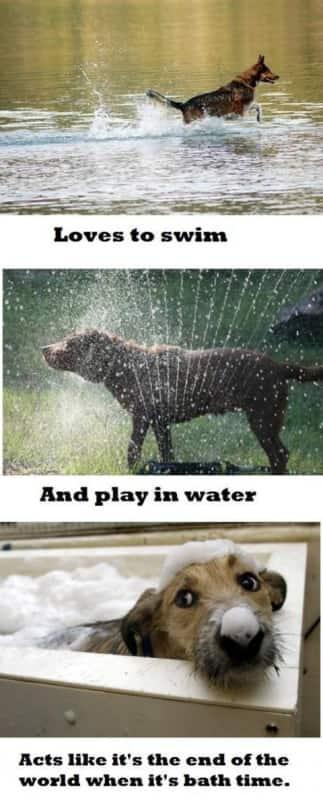 NOT A BATH!