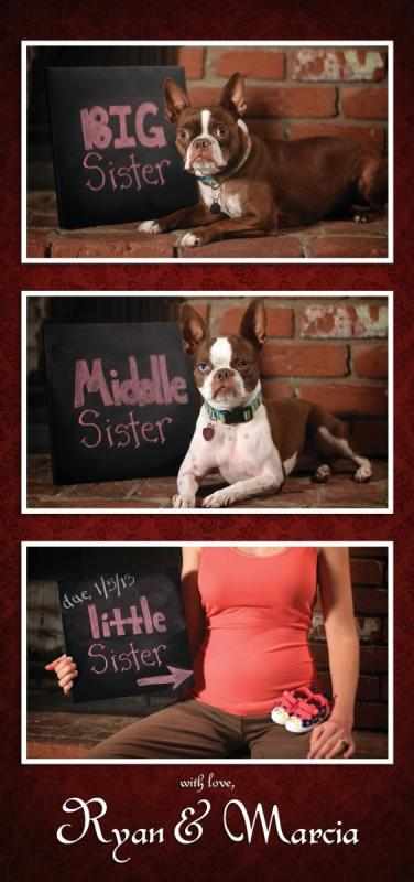 Little Sister on the Way