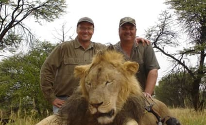PETA on Dr. Walter Palmer: HANG HIM!