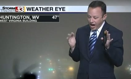 Weatherman Sees Spider, Flips the EFF Out