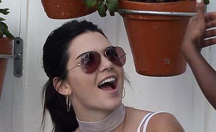 Kendall Jenner Restrains Deranged, Persistent Stalker
