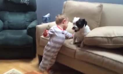 Little Boy Forgives Dog Who Refuses to Fetch
