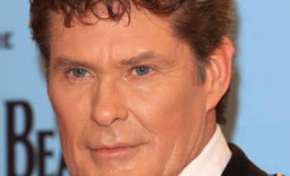 David Hasselhoff Letting Self Go