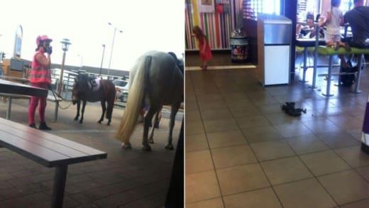 Horse in McDonald's