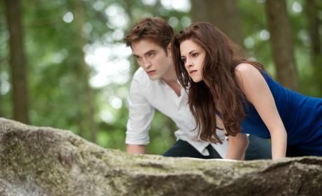 Bella and Edward Pic