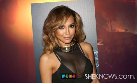 Naya Rivera Plastic Surgery: Real or Rumor?