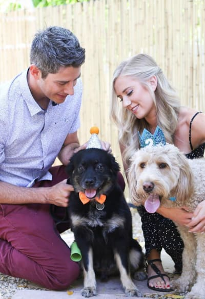 Arie Luyendyk Jr. and Lauren Burnham with Dogs