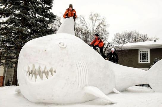 Giant Snow Shark