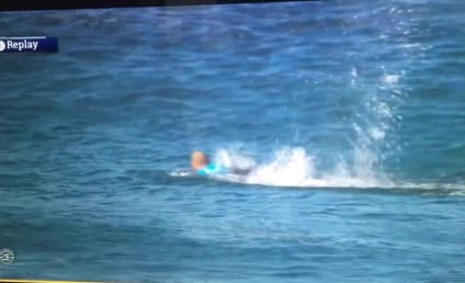 Surfer Attacked By Shark on Live TV! Watch Now!