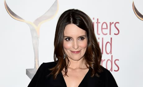 Tina Fey Red Carpet Picture