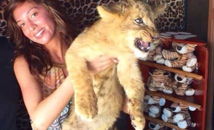 Farrah Abraham, Pissed Off Lion Cub Celebrate Sophia's Kindergarten Graduation