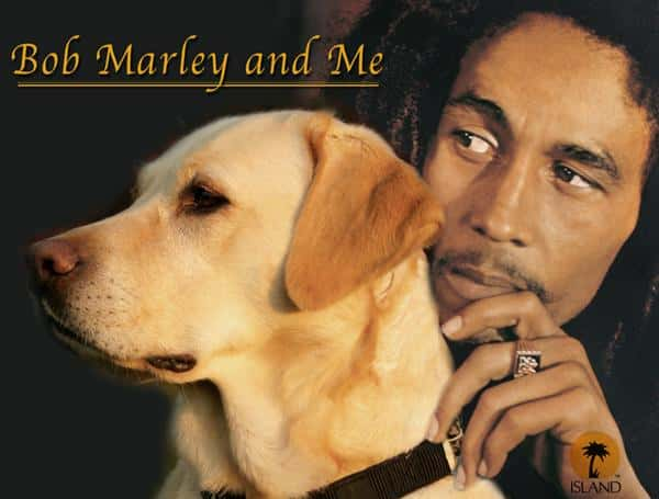 Bob Marley and Me