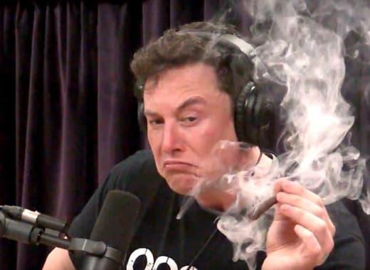 Elon Musk Smokes Pot