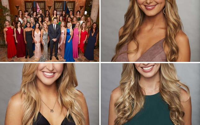 The bachelor season 22 group shot