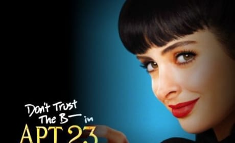 Is Don't Trust the B---- in Apartment 23 inappropriate television?