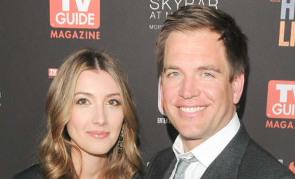 Michael Weatherly, Wife Welcome Second Child!