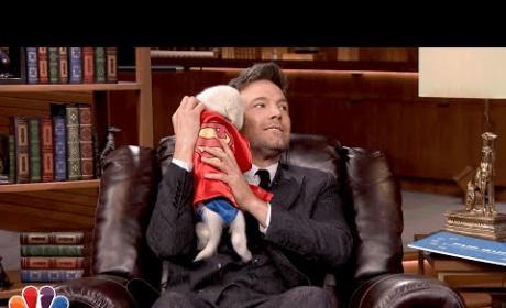 Ben Affleck Cuddles Superhero Puppies, Universe is Smitten