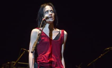 Fiona Apple Heckled on Stage, Breaks Down in Tears, Calls Rex Reed a C--t