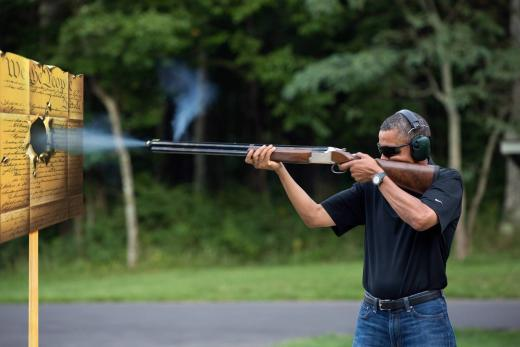Obama Gun Pic Parody
