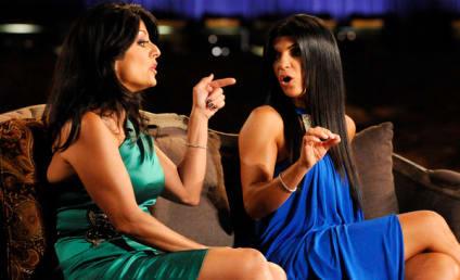 Dina Manzo Defends Teresa Giudice, Tells The Truth!
