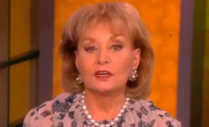 Barbara Walters Retirement: TV News Legend Calling it Quits in May 2014