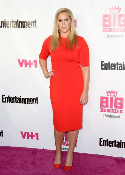 Amy Schumer is Gorgeous on the Red Carpet Image