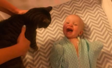 Cutest Baby Ever Can't Stop Laughing Over Cat