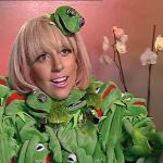 Lady Gaga the Muppet