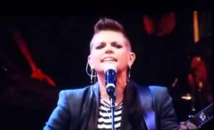 """The Dixie Chicks """"Wrecking Ball"""" Cover: AMAZING!"""