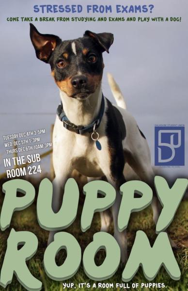 puppy room