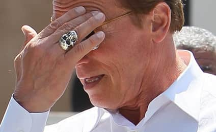 Arnold Schwarzenegger, Patty Baena to Reunite?