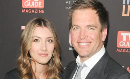 Michael Weatherly, Wife Expecting Baby #2!