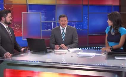 """News Anchors Can't Stop Laughing About """"Big Beavers"""""""