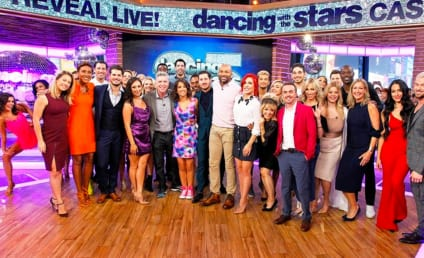 Dancing with the Stars Season 25: Who Will Win?