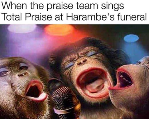 Harambe Funeral Meme