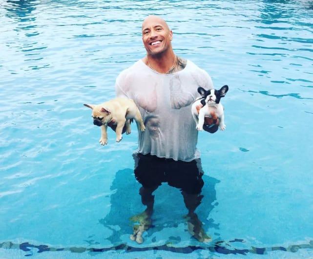 Those Puppies