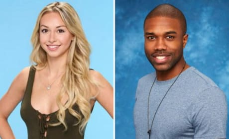 13 Bachelor in Paradise Headlines We Thought About Using For This Ridiculous Story