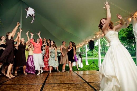 Bride Throwing Cat: Meme 1