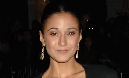 The Hollywood Gossip Asks: Who is Emmanuelle Chriqui?