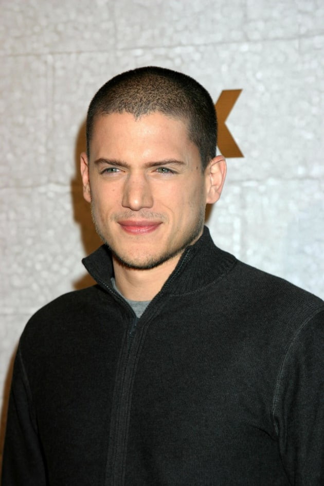 Wentworth Miller Picture