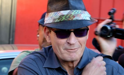 Bizarre Behavior: Charlie Sheen Allegedly Shouts N Word, Cakes Face in Cocaine